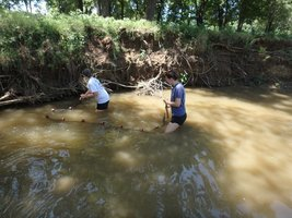 Howe Science Teachers Participate in Local Fish Collection